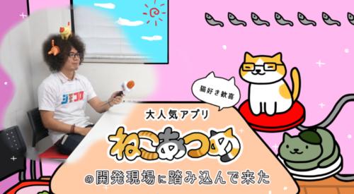 【猫好き歓喜】大人気アプリ「ねこあつめ」の開発現場に踏み込んで来た