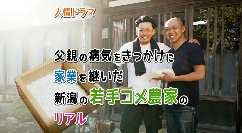 【人情ドラマ】父親の病気をきっかけに家業を継いだ「新潟の若手コメ農家」のリアル