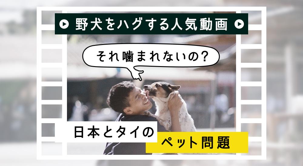 野犬をハグする人気動画 -「それ噛まれないの?」日本とタイ ...
