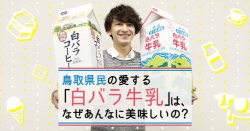鳥取県民の愛する「白バラ牛乳」は、なぜあんなに美味しいの?
