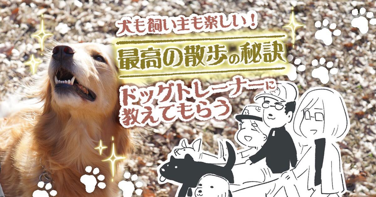 犬も飼い主も楽しい!「最高の散歩」の秘訣をドッグトレーナーに教えてもらう