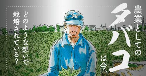 農業としてのタバコは今、どのような想いで栽培されている?